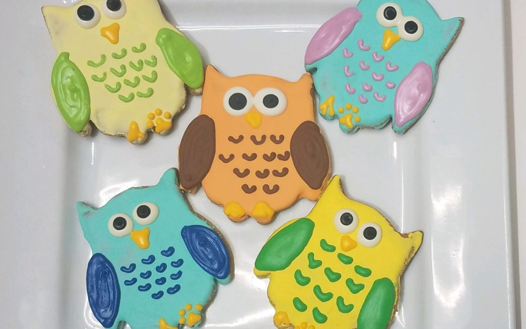 owl dog treat